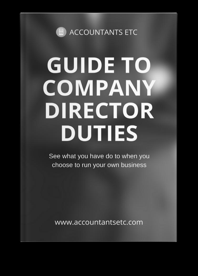 guide directors duties