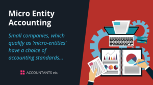 micro entity accounting