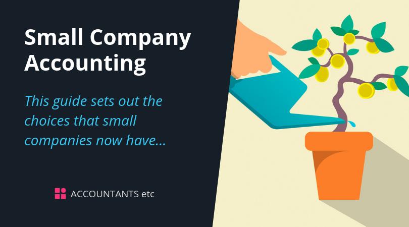 small company accounting