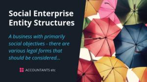 social enterprise entity structures