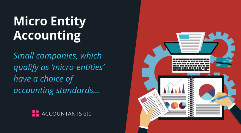 micro entity accounting