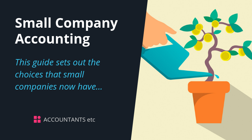 small company accounting