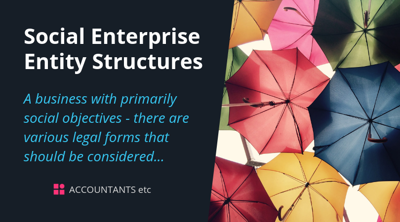social enterprise entity structures